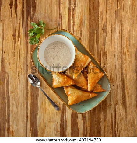stuffed cakes dish on a plate with white sauce, decorated with parsley on a wooden surface - stock photo