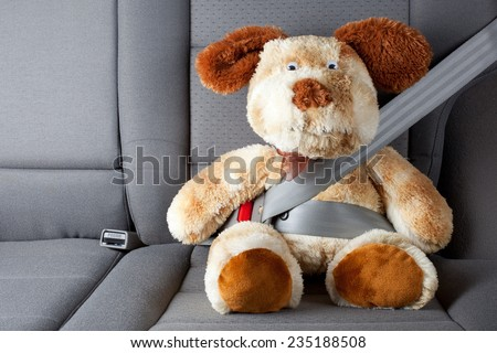 Stuffed toy with seat belt fastened  - stock photo