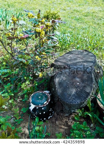 Stump and teapot - stock photo