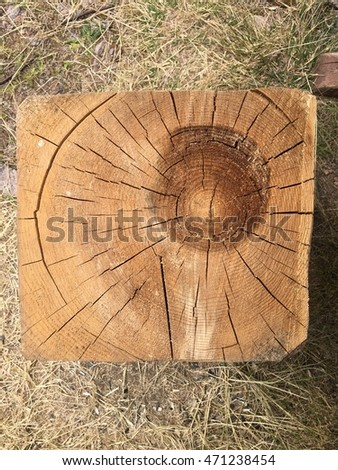 stump of a tree with annual rings cut into square shape isolated on grass