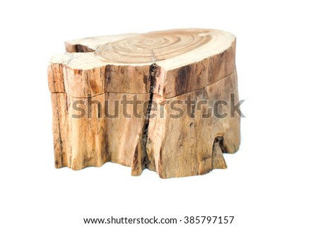 Stump on white background