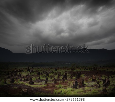 Stumps on the valley caused by deforestation and slash and burn type of agriculture of Madagascar. Focus on the stumps in the middle of frame - stock photo