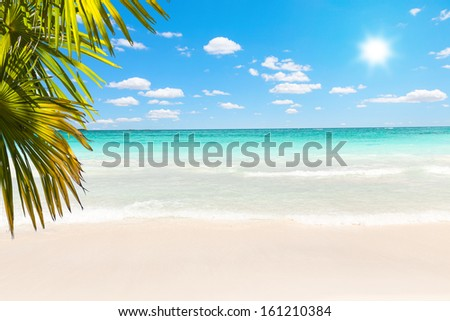 Stunning Caribbean beach with transparent water - stock photo