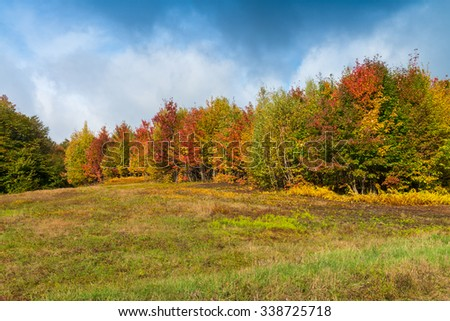 Stunning colors of Vermont foliage, New England. - stock photo