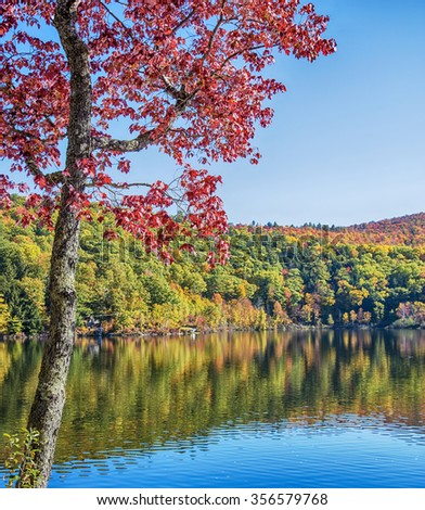 Stunning fall foliage and lake in Vermont, USA. Focus is on the foreground tree. - stock photo