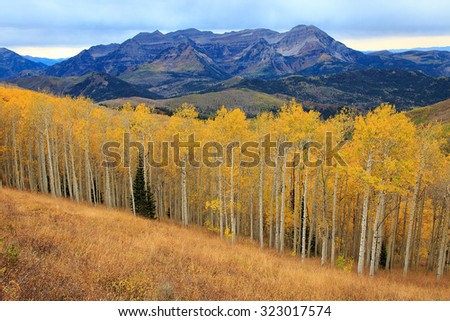 Stunning fall landscape in the Utah mountains, USA. - stock photo