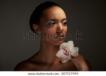 Stunning Portrait of an African American Black Woman - stock photo