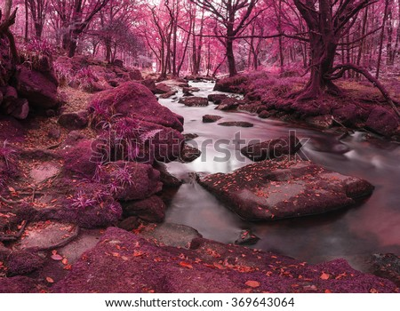 Stunning surreal alternate landscape of river flowing through forest