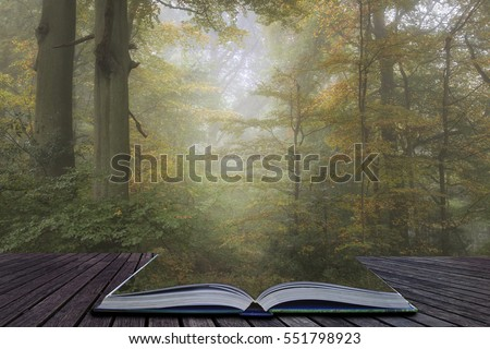 Stunning vibrant evocative Autumn Fall foggy forest landscape coming out of pages of book