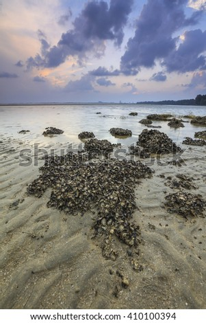 Stunning Vibrant sunset with cloudy sky at the barnacles beach of Kuantan, Pahang, Malaysia. Image contain grain, noise and soft focus.