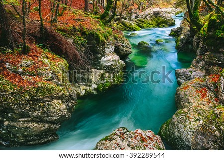 Stunning view of the canyon Mostnica (Mostnice Korita) with crystal clear blue water, colorful forest and white rocks - Triglav national park, near Bled, Slovenia, Europe - stock photo