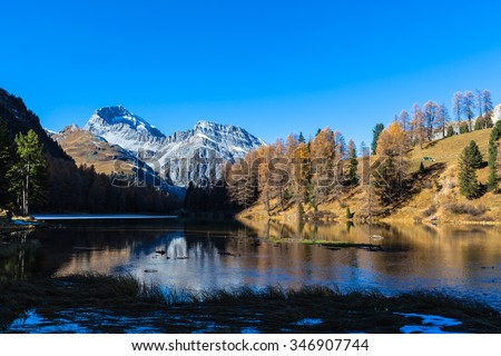 Stunning view of the Palpuogna lake with golden larch, the peak of Piz Ela and beautiful reflection in autumn, Canton of Grisons, Switzerland