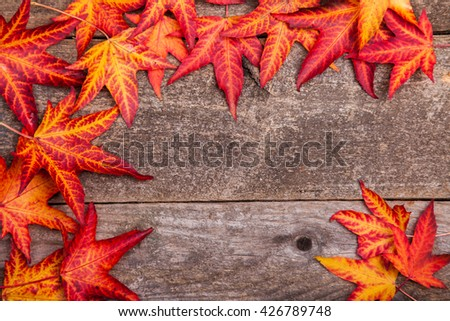 Styled stock autumnal photograph, autumn leaves on a wooden background, copy space for your business message, promotion, headline