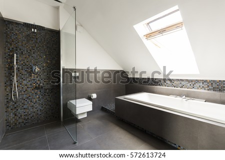 Stylish bathroom with transparent showerstall in the attic