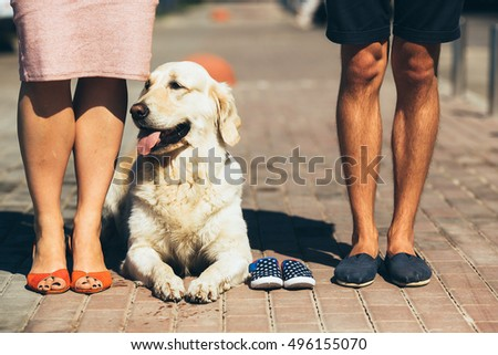 Stylish couple. Closeup of female and male feet in casual shoes on street background.