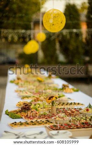 Stylish Outdoor Buffet Dinner Delicious Appetizers Party Light Balls Trees On The Background