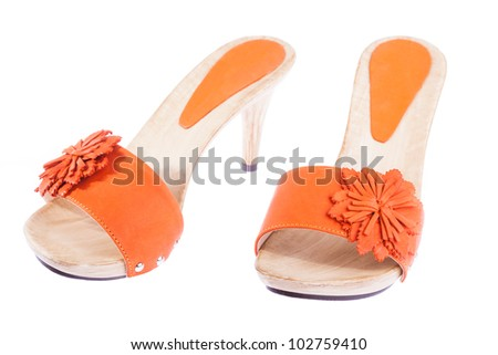 stylish woman's opened clogs shoes isolated