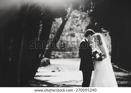 Stylish young charming bride and groom kissing laugh at cypress alley Montenegro black and white - stock photo
