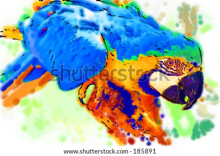 Stylized illustration of a golden macaw...