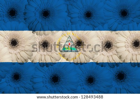 stylized national flag of nicaragua with gerbera daisy flowers as concept and symbol of love, beauty, innocence, and positive emotions - stock photo