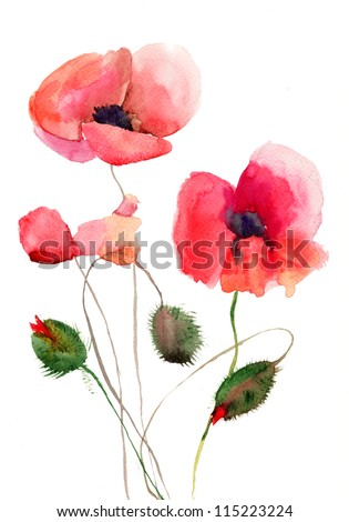 Stylized Poppy flowers illustration, watercolor flowers - stock photo