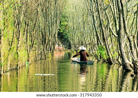 Submerged trees in YEN stream, Myduc, Hanoi, Vietnam.