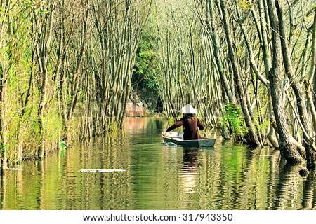 Submerged trees in YEN stream, Myduc, Hanoi, Vietnam.