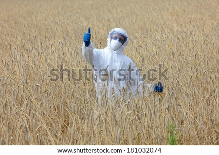 success - agricultural engineer with thumb up gesture on field of crops  - stock photo