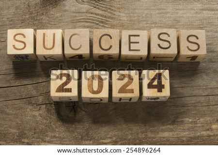 success 2024 on a wooden background - stock photo