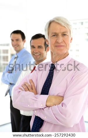 Successful business executives - stock photo