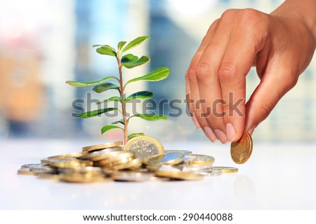 Successful investment. Plant and coins on table. - stock photo
