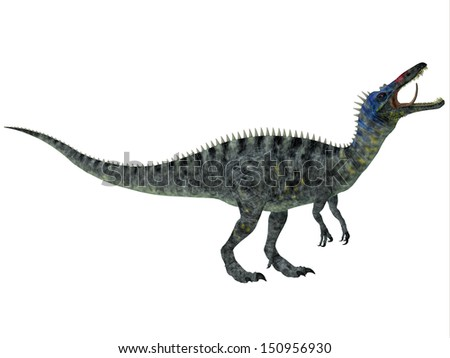 Suchomimus on White - Suchomimus was a large Spinosaurid dinosaur with a crocodilian-like set of jaws. It lived in the Cretaceous Period in Africa, when the Sahara was a lush swampy habitat. - stock photo