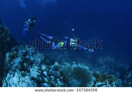 SUDAN, Red Sea, U.W. photo, underwater photographer