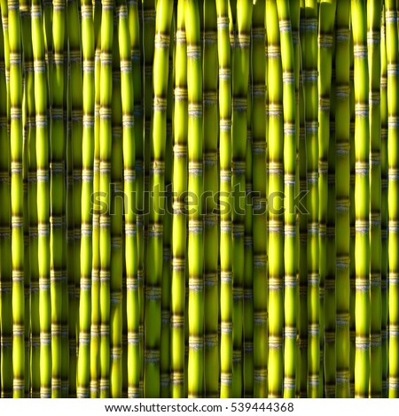 Sugar cane green background 3d rendering.