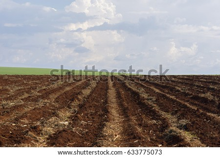 sugar cane plantation and plowed land