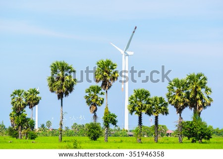 Sugar palm tree surrounded with rice field and wind turbine background:select focus with shallow depth of field:ideal use for background. - stock photo