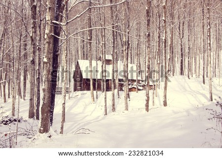 sugar shack in snowy forest - stock photo