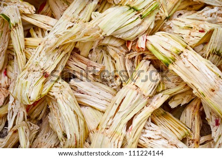 Sugarcane bagasse - the waste of sugar manufacture