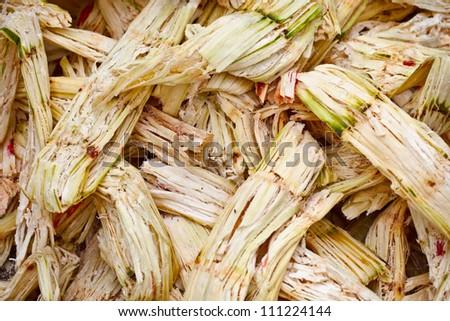 Sugarcane bagasse - the waste of sugar manufacture