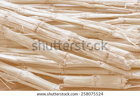 Sugarcane bagasse - the waste of sugar manufacture process in tinted photo - stock photo