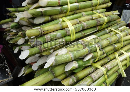 Sugarcane placed on street in Penang, Malaysia