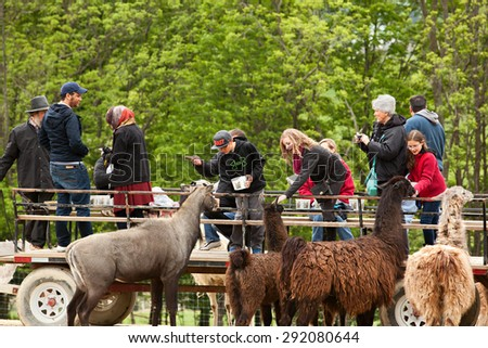 SUGARCREEK, OH - MAY 19, 2015:  A group of tourists, including school children on a field trip, enjoying feeding the animals from a wagon at an exotic animal farm. - stock photo
