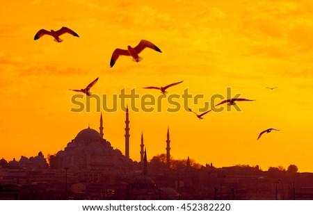 Suleymaniye Mosque at sunset with a seagulls, silhouettes of arabic city and flying birds. Panoramic view of famous muslim architecture with minarets, turkish landmarks in old town of Istanbul.