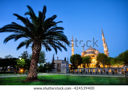 Sultanahmet Mosque (Blue Mosque) with palm tree at sunrise. Istanbul, Turkey. - stock photo