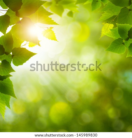 Summer Afternoon. Abstract natural backgrounds with beauty bokeh - stock photo