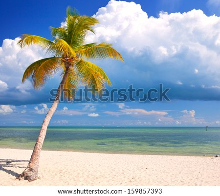 Summer at a tropical paradise in Florida Keys, USA with palm trees, blue sky, clouds and crystal clear water of Atlantic Ocean