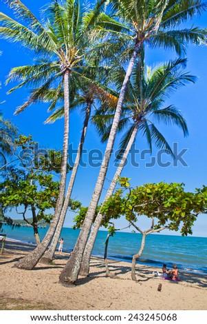 Summer at a tropical paradise, palm beach, Cairns Australai  - stock photo
