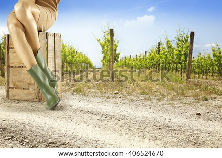 summer background of vineyard and woman legs  - stock photo