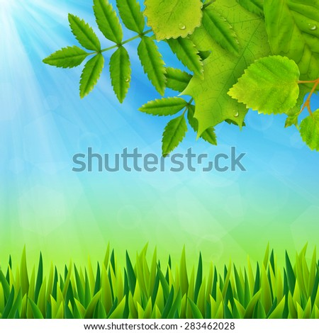 Summer background with fresh green leaves,  illustration