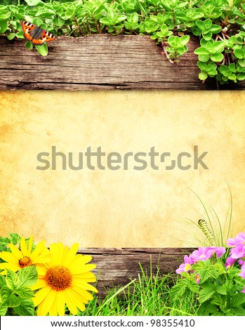 Summer background with old wooden plank, grass and green leaves - stock photo